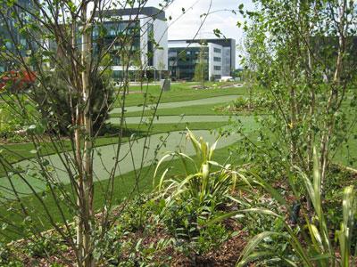 rennie design Golf Course Designer Glasgow Golf Architecture